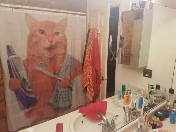 cool-shower-curtains (32)