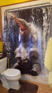 cool-shower-curtains (34)