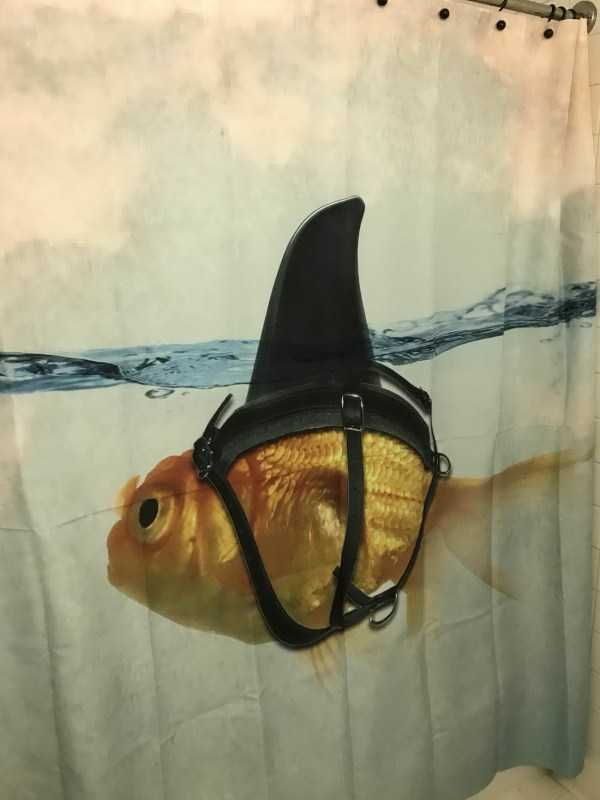 cool-shower-curtains (37)