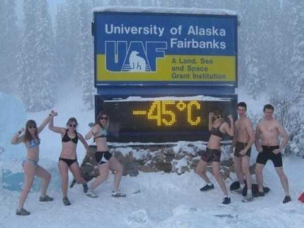 funny-alaska-pics (8)