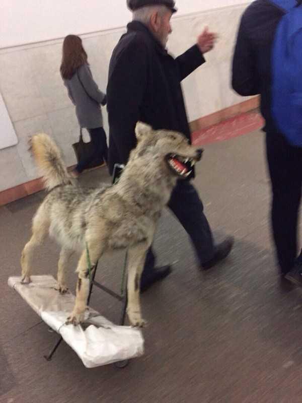russian-subway-fashion (12)