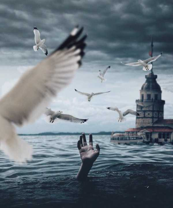Tekin-Türe-photo-manipulation (35)