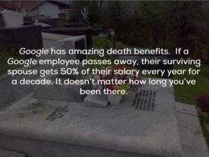 google-facts (12)