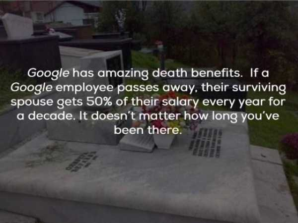 google-facts (12)