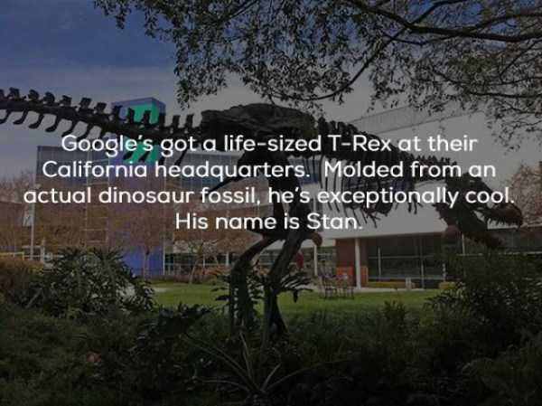 google-facts (14)