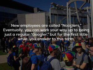 google-facts (20)