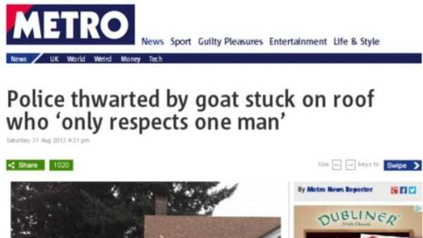 hilarious-news-headlines (17)