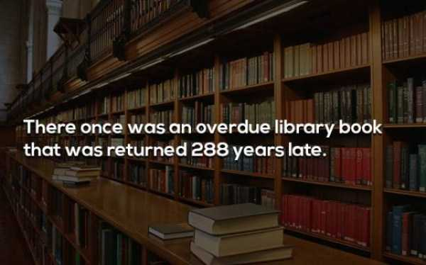 more-fun-facts (40)
