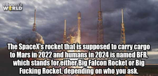more-fun-facts (46)