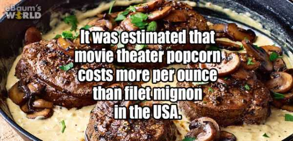 more-fun-facts (49)