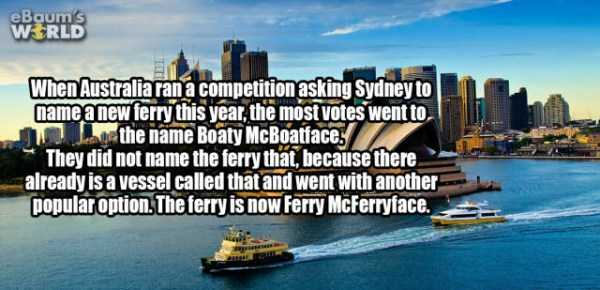 more-fun-facts (59)