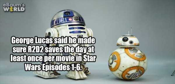 more-fun-facts (7)