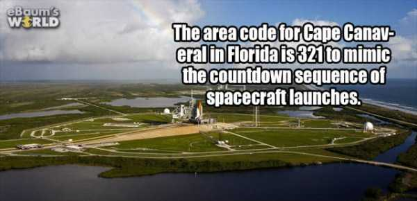 more-fun-facts (8)