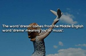 dreaming-facts (12)