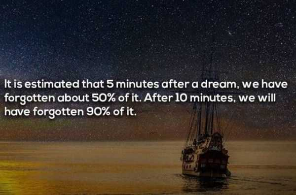 dreaming-facts (14)