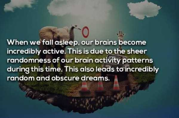dreaming-facts (5)