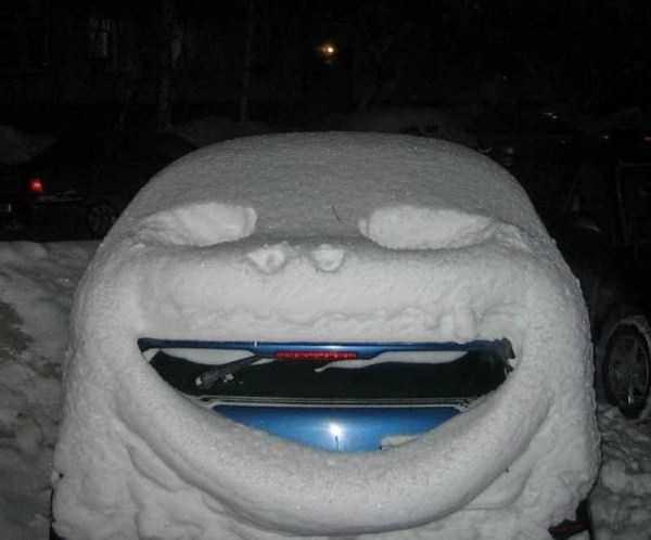 funny-winter-photos (11)