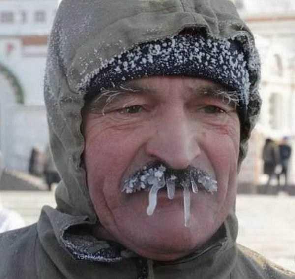 funny-winter-photos (14)