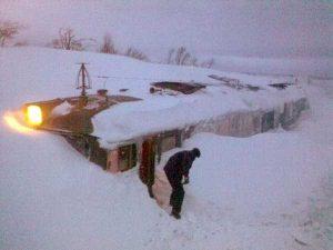 funny-winter-photos (2)