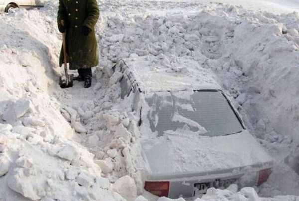 funny-winter-photos (28)