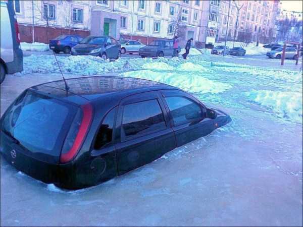 funny-winter-photos (3)