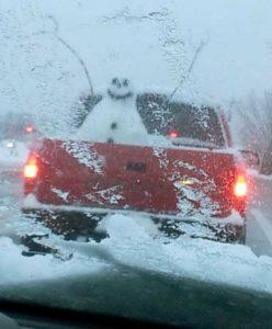 funny-winter-photos (44)