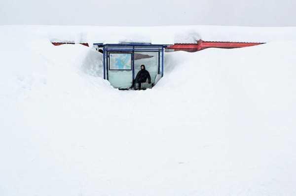 funny-winter-photos (6)
