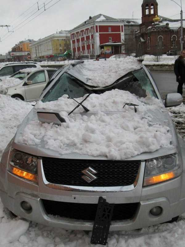 funny-winter-photos (9)