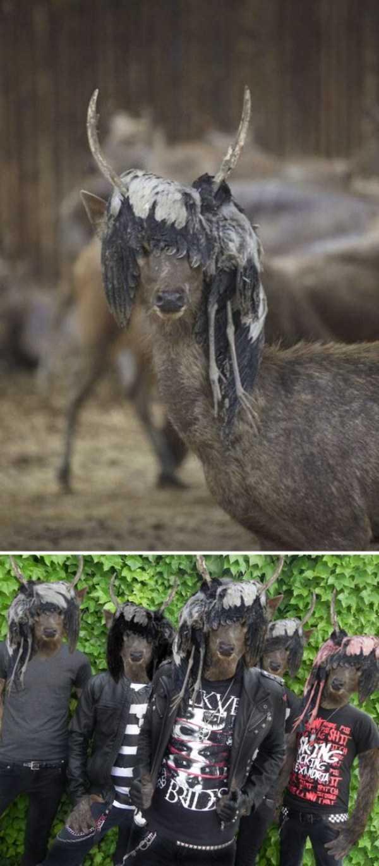 hilarious-photoshop-battles (26)