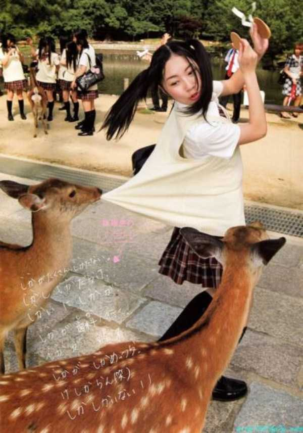 perfectly-timed-photos (24)