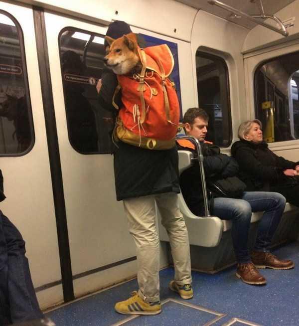 russian-metro-fashion-style (59)