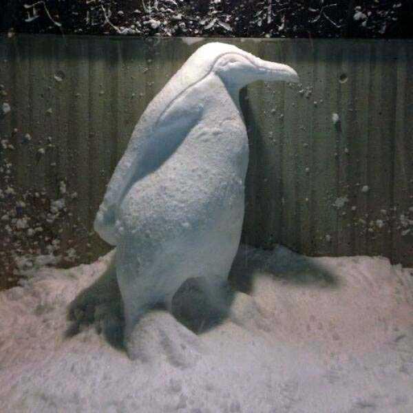tokyo-snow-sculptures (35)