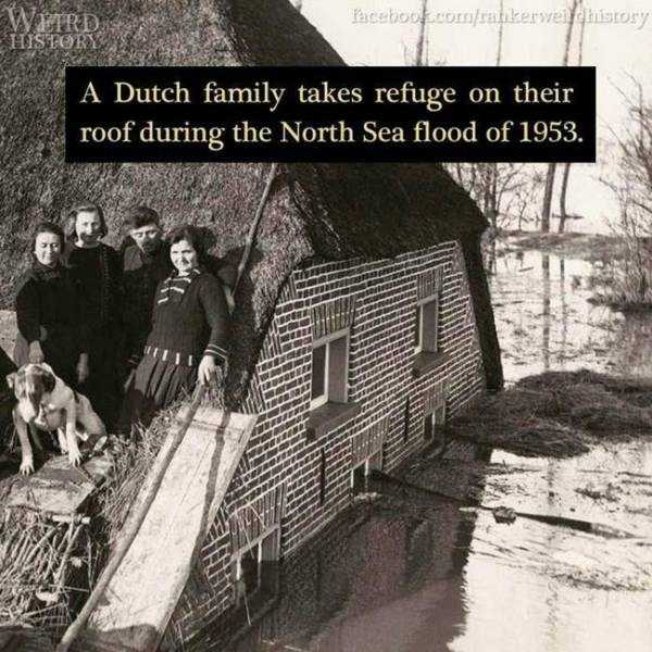 weird-historic-things (17)
