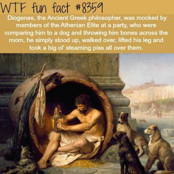 fun-facts (12)