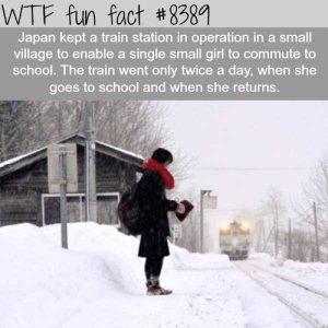 fun-facts (21)