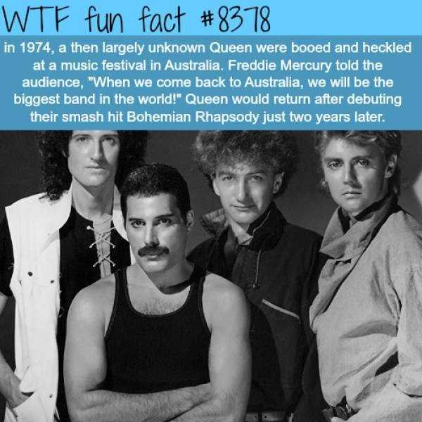 fun-facts (28)