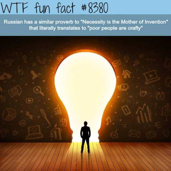 fun-facts (32)