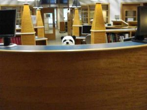 funny-librarians (1)