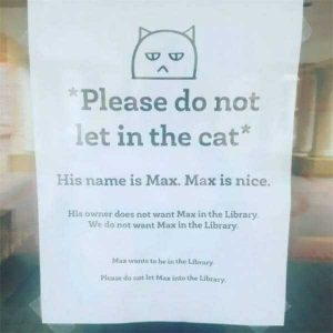 funny-librarians (4)