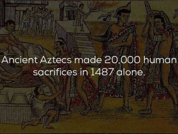 history-facts (16)