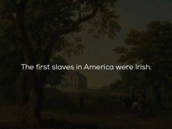 history-facts (6)