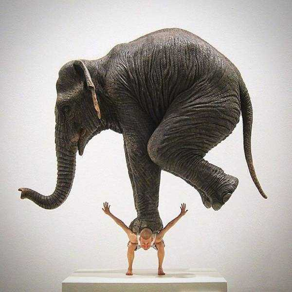 sculptures-defy-gravity (10)