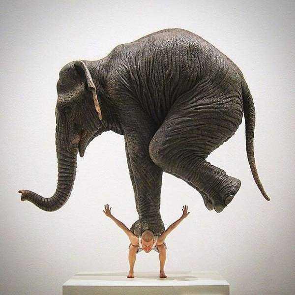 sculptures-defy-gravity (10)