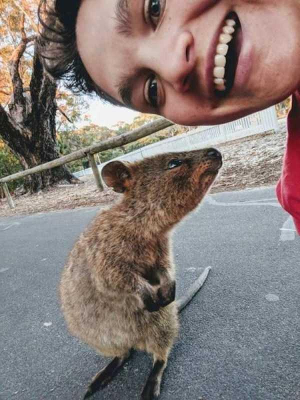 australia-crazy-pics (15)