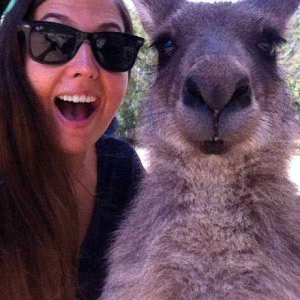 australia-crazy-pics (16)