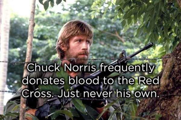 chuck-norris-jokes (17)