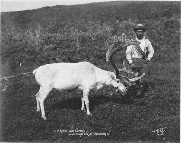 eskimos-vintage-photos (10)