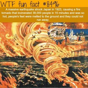 funny-facts (1)