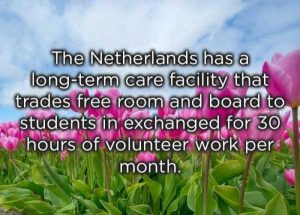 funny-facts (39)