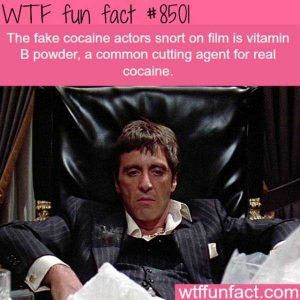 funny-facts (5)